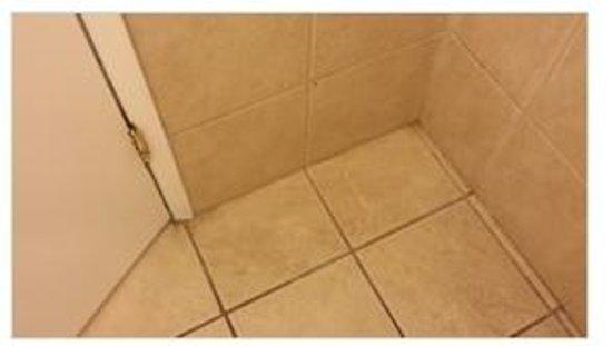 Anaheim Executive Inn & Suites: dirt and hair in on the bathroom floor