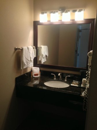Monarch Hotel and Conference Center: Bathroom sink