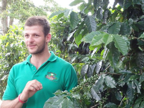 Espiritu Santo Coffee Tour: Jose - tour guide