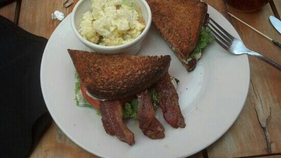 A Taste of Ely: BLT on wheat toast with side of potato salad