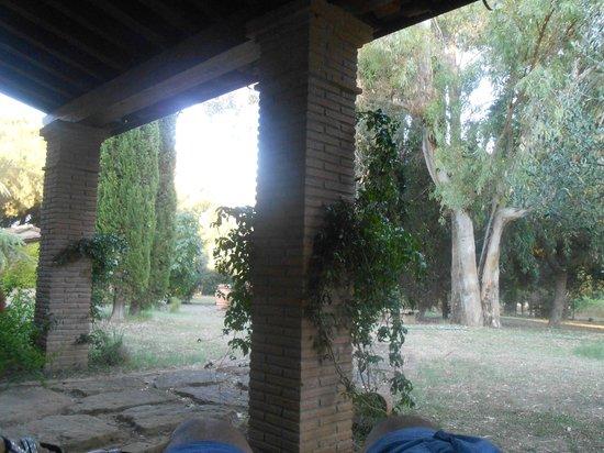 Relais Casale Il Poggetto: portico e parco