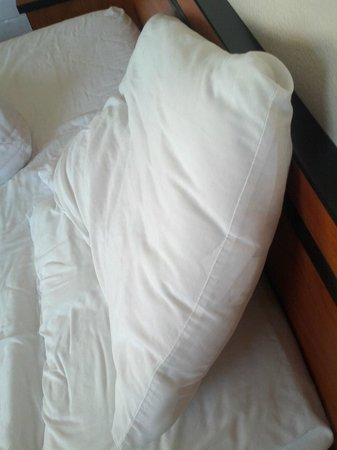 Super 8 Colorado Springs Airport: Flat pillows, bring your own!