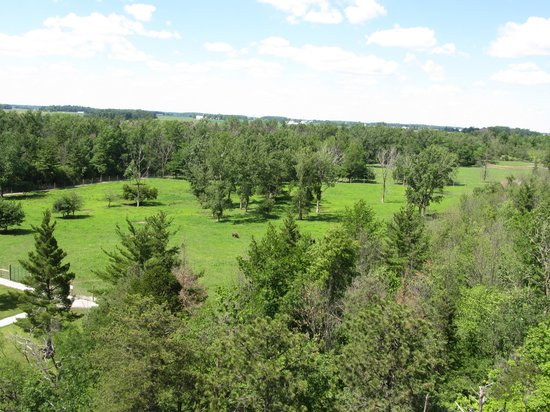 Ouabache State Park: view from the fire tower