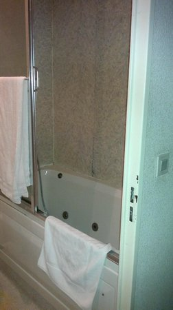 Hotel Tonic : la vasca (un pò altina per chi é basso!)