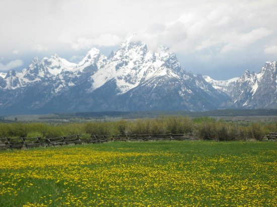 Moose Head Ranch: Grand Tetons & Moose Head Pasture