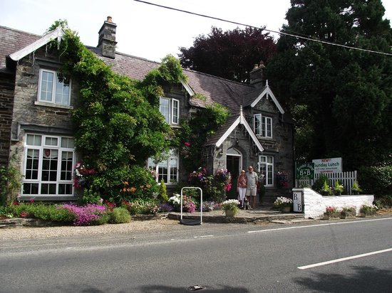 Fernhill Lodge Licensed B&B: Taken the Morning we were leaving