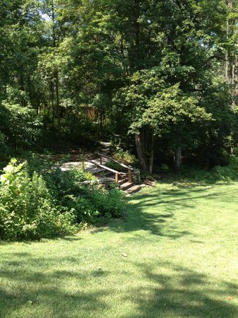 Makanda Inn & Cottages: Partial view of grounds (steps lead to cabins)
