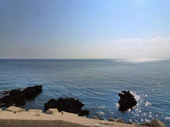 Rosa dei Venti : Sea view, just next to the port