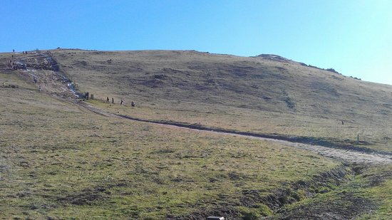 Mission Peak Regional Preserve: Start of Last Steep Climb to Top