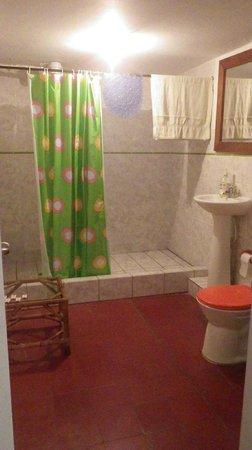 Iguana Hostel: Salle de bain privée