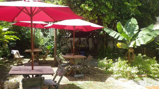 Iguana Hostel: Jardin
