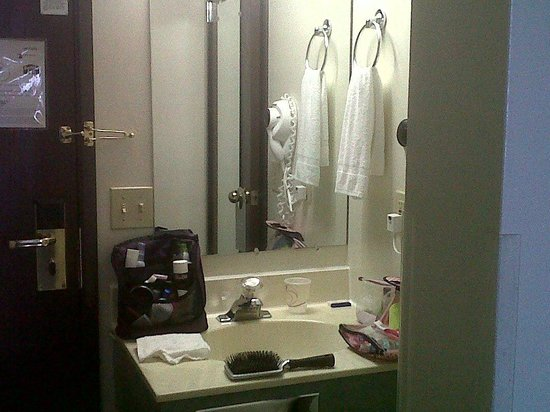 Hotel J Green Bay: Sink and vanity