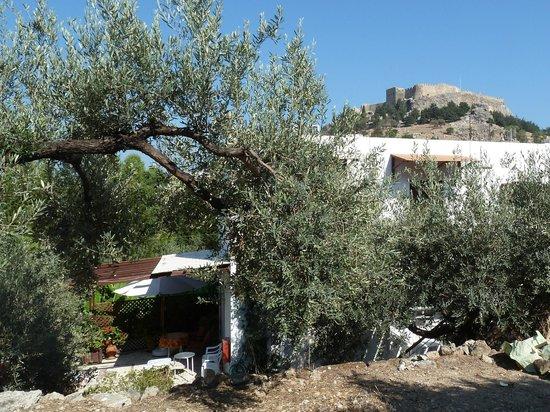 Villa Galini Lindos: Villa Gallini, Lindos acropolis behind