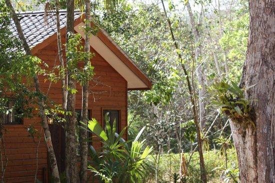Mariposa Jungle Lodge: walking round the grounds