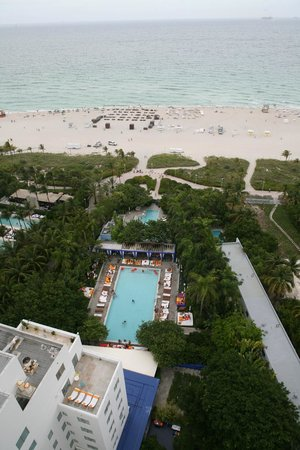 Shore Club South Beach Hotel: view from the roof of the Shore club