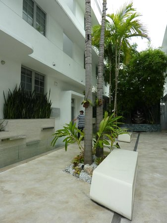 Dream South Beach: walk back to our room