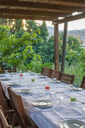 Terrassa : Outdoor dinner table