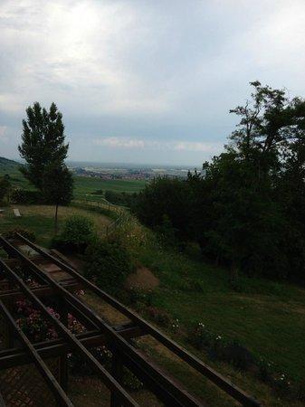 Le Clos Saint Vincent : view from terrace