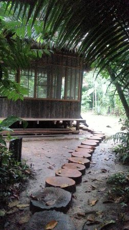 Madidi Jungle Ecolodge: Dining room
