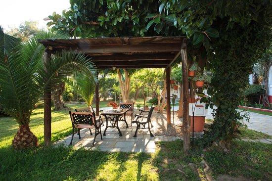 Castello Apartments: Garden View