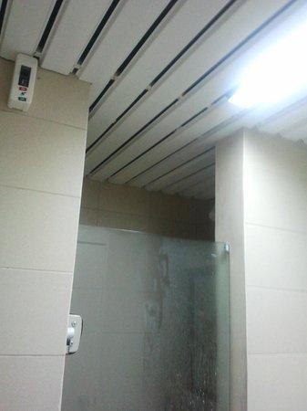 Detalhe Do Teto Do Banheiro O Forro Deixa A Mostra Alguns