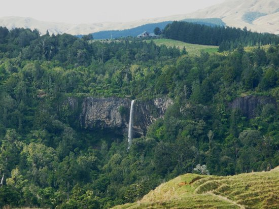 Bridal Veil Falls : Waireigna is set in a large area of Department of Conservation bush
