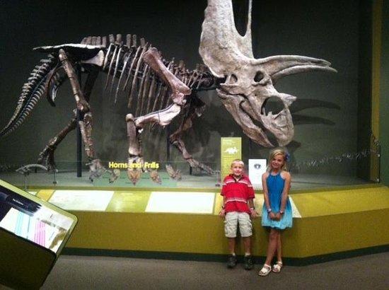 Sam Noble Oklahoma Museum of Natural History: We feel so small