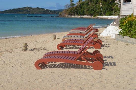 Coralview Island Resort: Suntan Chairs