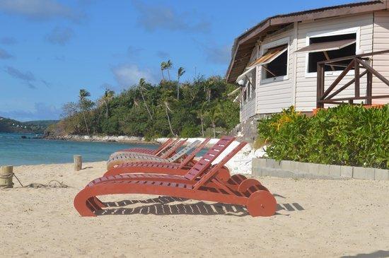 Coralview Island Resort: Beach