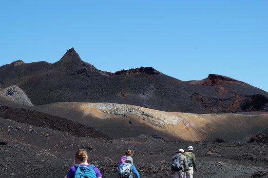 Sierra Negra: Chica -- most recent lava flows