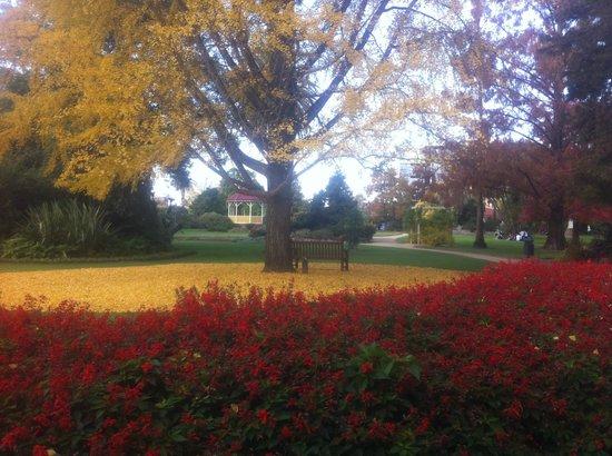 Albury Botanic Garden: Gardens in Autumn