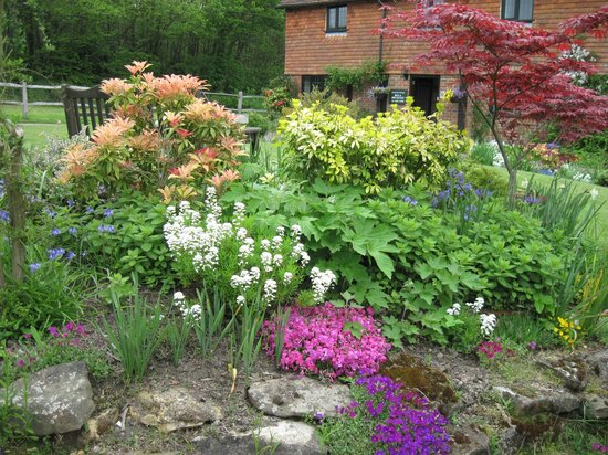 Hononton Cottage Bed & Breakfast: Front gardens
