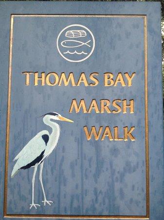 Mount Desert Island Oceanarium : Do not skip rain or shine marsh walk at Oceanarium