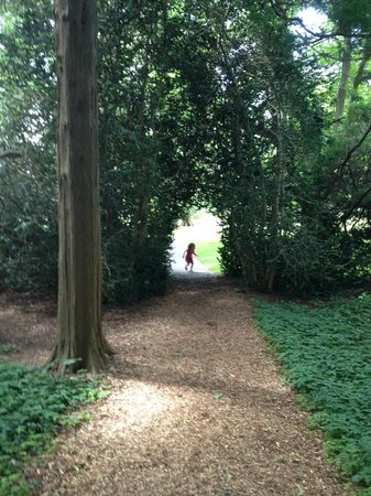 Blithewold Mansion, Gardens & Arboretum : Beautiful archway