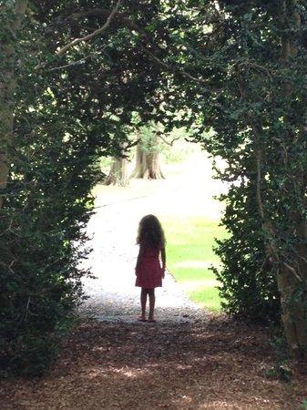 Blithewold Mansion, Gardens & Arboretum : Stunning