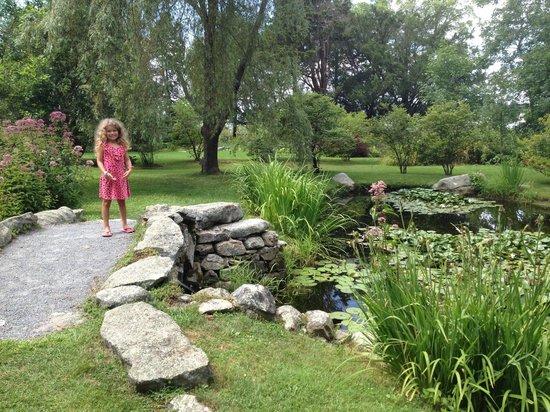 Blithewold Mansion, Gardens & Arboretum : Water Garden