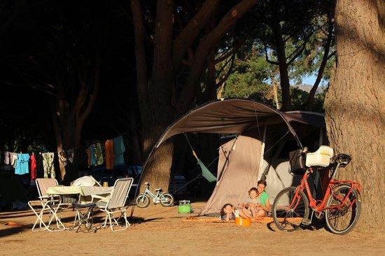 Algajola, Francia: campeggio