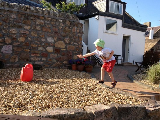 Honeypot Guest House & Tearoom: Action picture from the stone chucking competition