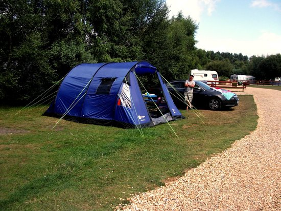 Wareham Forest Tourist Park: camping pitch