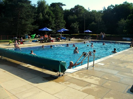 Wareham Forest Tourist Park: pool