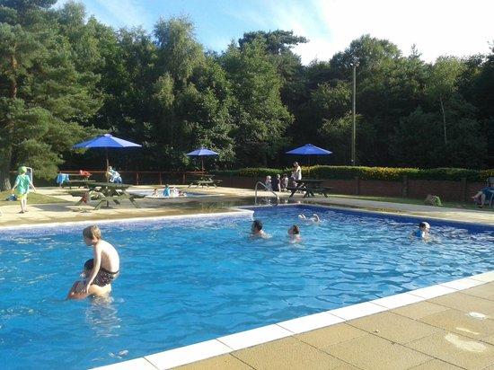 Wareham Forest Tourist Park : pool