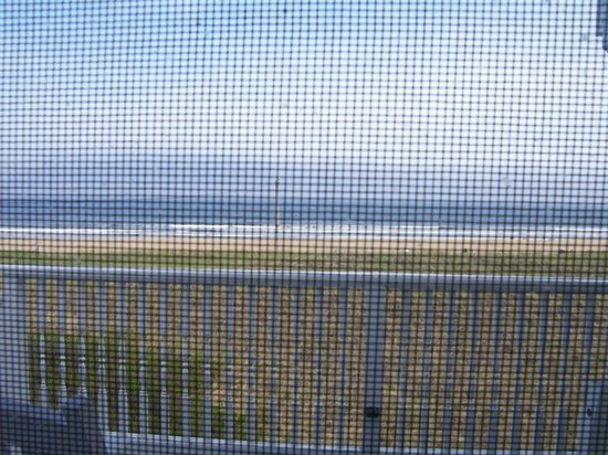 BillowHouse: View through screen of room (it looks much better in person)