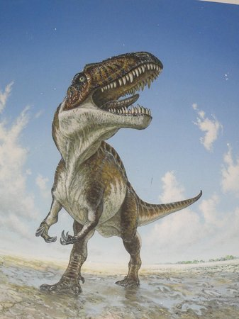 The Heritage Museum of the Texas Hill Country : TX Hill Country dinosaur