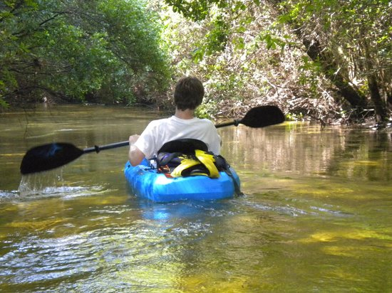 Turkey Creek Nature Trail : Kayaking on Turkey Creek