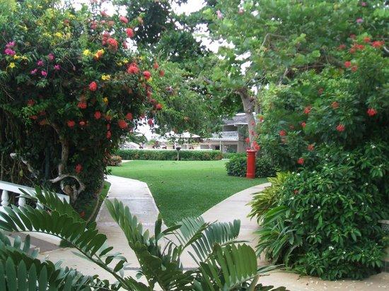 Sandals Royal Caribbean Resort and Private Island : propreté et beauté su site