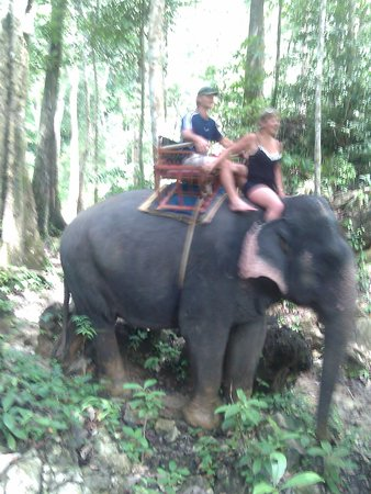 Paradise KohYao: elephant riding with a great lunch and shopping at Krabbi. Awesome day