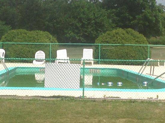 Ramada New Hartford: Green pool. Yuck!