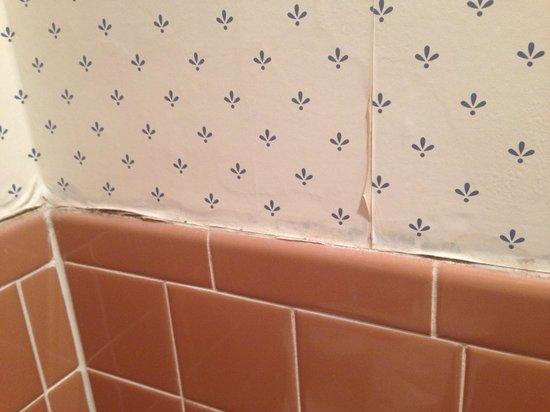 Ramada New Hartford: Peeling wallpaper.