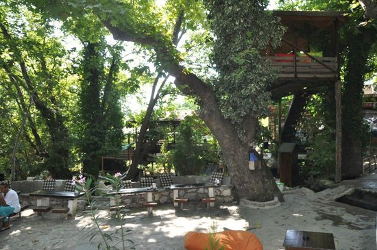 Tlos Yakapark Trout Restaurant Cafe & Bar