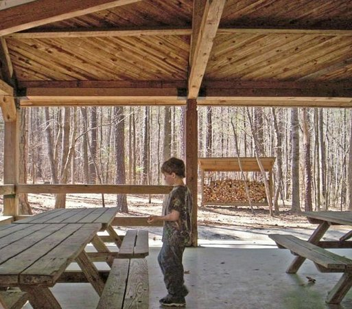 Clemmons Educational State Forest : Clemmons Park Picnic Shelter